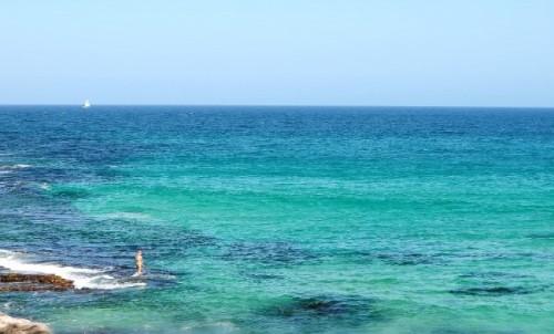 Bondi beach horizon Alice Liddell blog